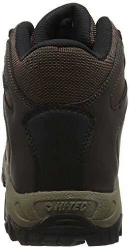 Hi-Tec Cascadia, Chaussures de Randonnée Hautes Homme Marron (Dark Chocolate 041)