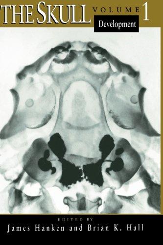 The Skull, Volume 1: Development