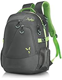 Skybags 38 Ltrs Grey Laptop Backpack (CREW3GRY)