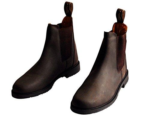 Harry' s Horse stivali Jodhpur da donna American Leather, 30100243, Donna, Jodhpurstiefel American Leather - 44, marrone, 44 marrone