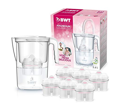 Bwt Speciale Caraffa da Acqua filtrante con magnesio Modello Vita Manuale e Set di 6filtri Magnesium Mineralizer