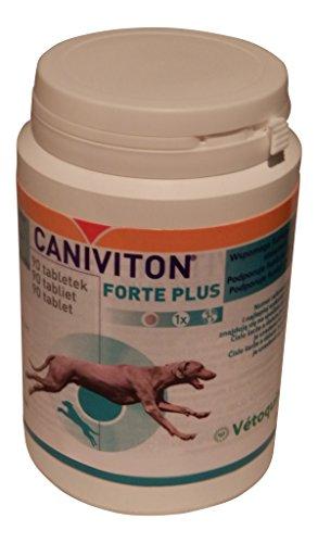 90 Tabletten Vetoquinol CANIVITON FORTE PLUS - Ergänzungsfuttermittel für Hunde zur Unterstützung der natürlichen Gelenkfunktion (Tabletten 30 Täglich 1)