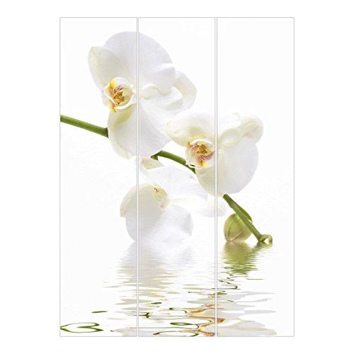 Bilderwelten Cortinas deslizables set - White Orchid Waters - 3 Paneles japoneses, cortina de panel deslizante panel cortina incl. sistema de montaje, Sistema de montaje: Sin montaje, Tamaño: 250 x 180cm (3 paneles de 250 x 60cm)