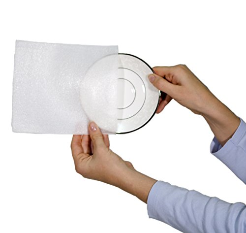 EcoBox China Gericht Verpackung Partition Kit, 2er Pack (v-7380) Kissen-Schaumtasche - Unterteller, Packung mit 10