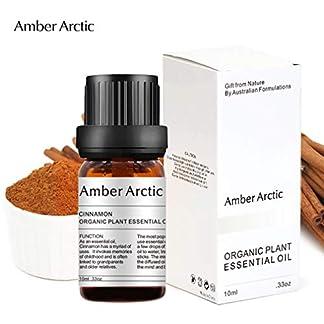 AMBER ARCTIC Canela Aceite Esencial Para Difusor, 100% Pura Terapia de Plantas Orgánicas Frescas Aceite de Canela 10Ml / 0.33Oz