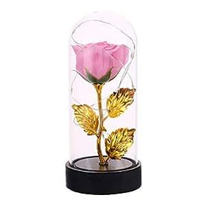 Xinzhi Rose Gift - Couverture de Rose éternelle avec des lumières