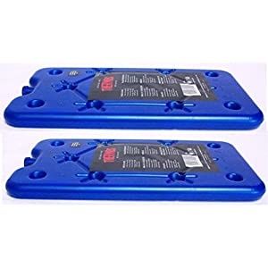 41EoR8gPVRL. SS300  - 2 x Thermos Freeze Board Ice Pack Small Ice Block Flat Travel Ice Box Pack 200g