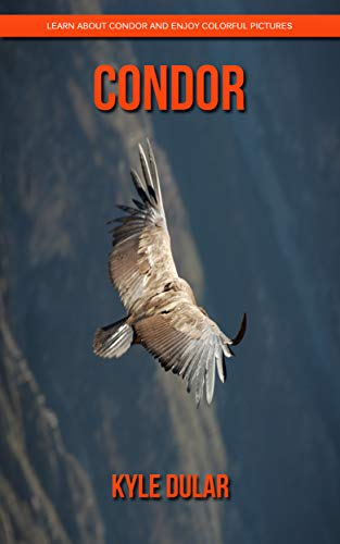 Descargar Epub Gratis Condor! Learn About Condor and Enjoy Colorful Pictures