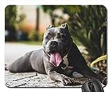 Gaming-Mauspads, Mauspad, Black Dog Animal Pet Tongue Grüne Pflanze