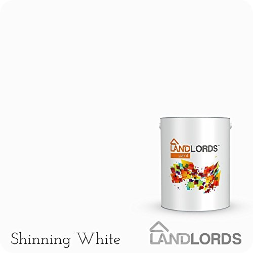 landlords-multi-surface-undercoat-paint-1l-shinning-white