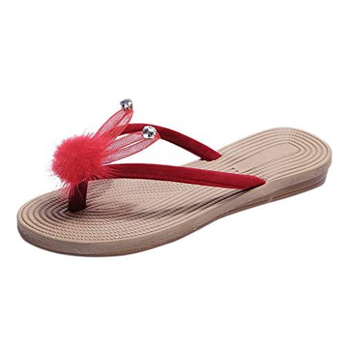 Damen Sandalen,ABsoar Mode Hausschuhe Frauen Sommer Kristall Cartoon Flip Flops Strand Sandaletten Schuhe Freizeitschuhe Sommerschuhe Größe 34-41