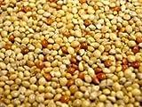 Willsbridge Willsbridge Mixed Millet Seeds 20kg