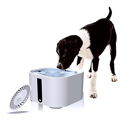 lennonsi 2L Pet Automatic Water Feeder Pet Water Fountain Smart Filtered Automatic LED Pet Dog and Cat Fountain Waterer Bowl (Plug UK)