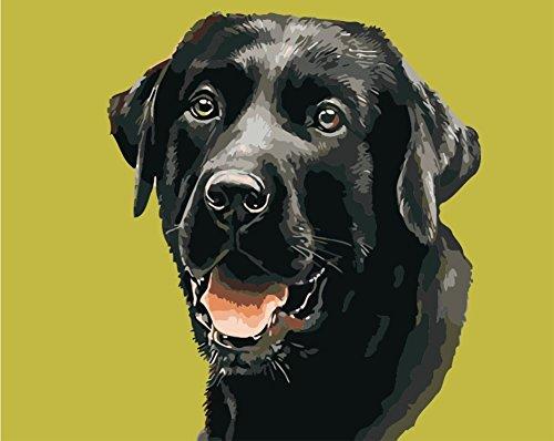 hlen Kits || schwarz Hund 50x 40cm || Malen nach Zahlen, DIGITAL Ölgemälde, Frameless (Star Trek-geburtstag Karten)