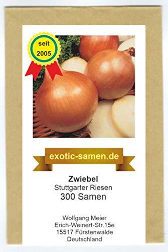 Zwiebel - Stuttgarter Riese (300 Samen)