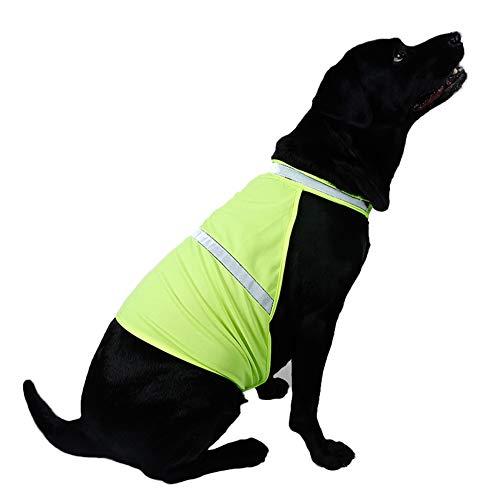 quanjucheer Reflektierende Weste, Verstellbare Jagd-Sicherheitsweste für Hunde, hohe Sichtbarkeit