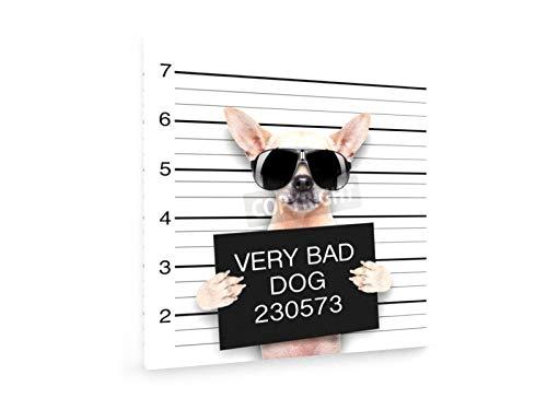 Very Bad Dog - 80x80 cm - Leinwandbild auf Keilrahmen - Wand-Bild - Kunst, Gemälde, Foto, Bild auf Leinwand - Statements