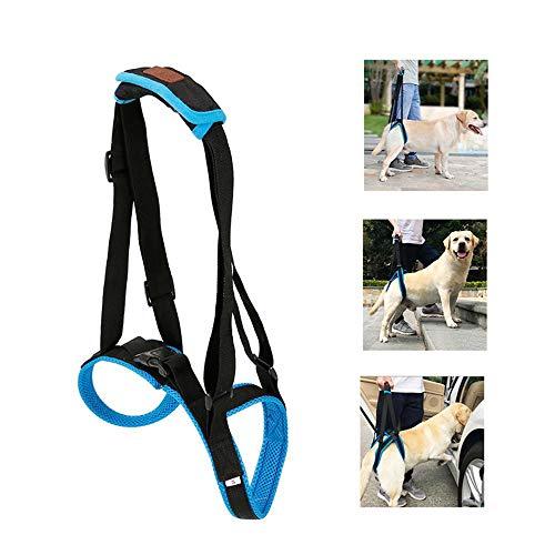 Umiwe Hunde Gehhilfe, Geschirr Hilfe Hunde für Probleme an der Wirbelsäule der Hüfte und Den Knien & Alte Kreuzband Unterstützung, Hundearthritis, Rehabilitation, schlechte Beweglichkeit