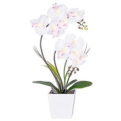 Floristlighting – Orquídea Artificial con luz LED, Funciona con Pilas, con 9 Luces