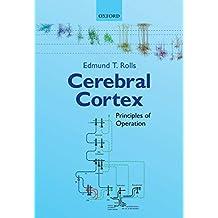 Cerebral Cortex: Principles of Operation