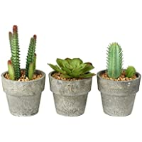 Juego de 3Miniatura Artificial Plantas Suculentas/Cactus en maceta con Pebble, gris detalle