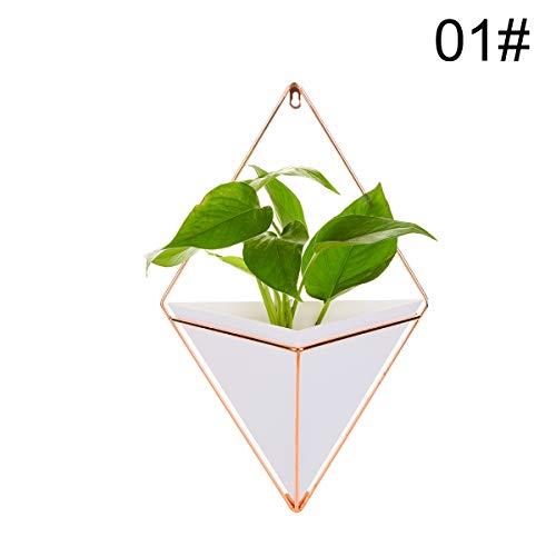 nde Vase & geometrische Wanddekor Container, kleine dekorative Wand Pflanzgefäße für Kaktus Dekor & Hängende Pflanzen ()