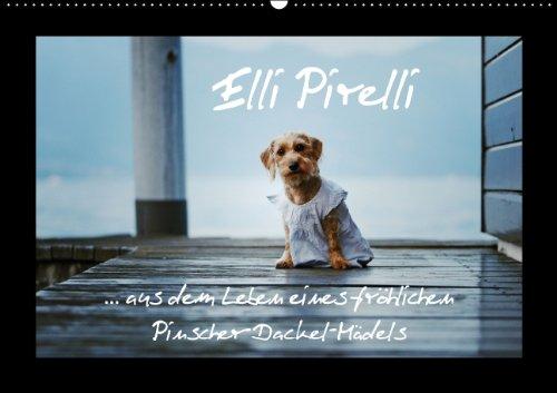elli-pirelli-aus-dem-leben-eines-fra