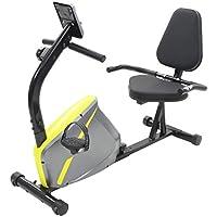 vidaXL Vélo Semi-Allongé d'exercice Masse en Rotation 5 kg Appareil de Fitness