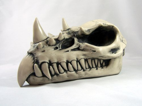dragon-skull-large-bone-finish-sculpture-by-design-clinic-by-design-clinic