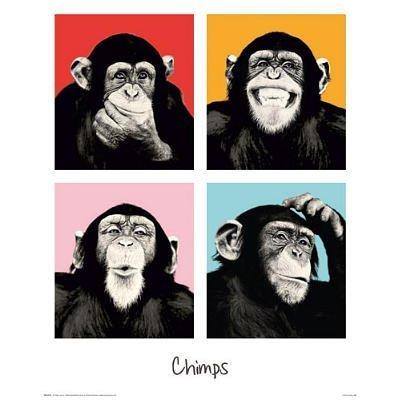 Monkey Chimp - Pop Color. Art Print Poster (15.75x19.75) by Poster Revolution - 15.75 X 15.75 Poster