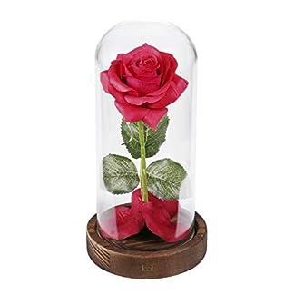 Kit de rosas «La Bella y la Bestia», Rosa de Seda roja y luz LED con pétalos caídos en la cúpula de Vidrio en la Base de Madera para la decoración del hogar Boda Cumpleaños Día de la Madre
