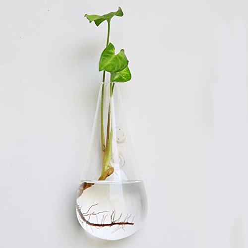 Hanbaili Kreative hängende Glasblume Pflanzer Vase Terrarium Haus Garten Wand Dekor (Wand-dekor-garten)