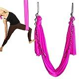 Wellsem Elastische Hängematte, für Pilates/ Yoga, mit Karabiner und Verkettung, 5 m, rose