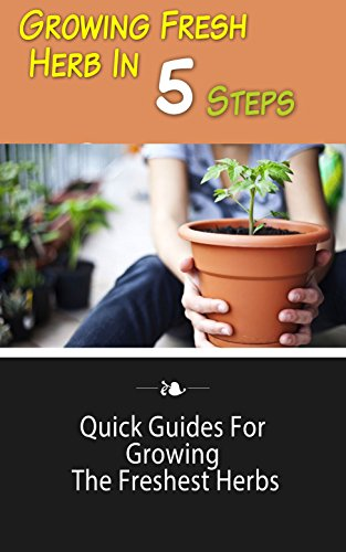 growing-fresh-herb-in-5-steps-quick-guides-for-growing-the-freshest-herbs