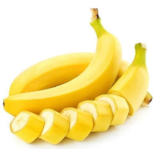 Shopmeeko 50 Pcs TrÚs Rare Arc-En-Banane Bonsaï En Plein Air Vivace Plantes Intéressantes Lait Goût Délicieux Fruits Bonsaï Pour La Maison & amp; Jardin: blanc