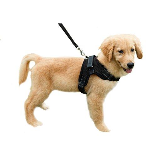 Cablaggio del cane riflettente Dog Collar imbottite extra pettorali con manico mantiene il vostro cane sicuro passeggiate e giri in macchina (Nero, M)
