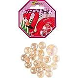 KIM'PLAY-20+1 Billes FLAMAND Rose, COU500841, Multicolore