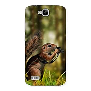 Squirrel Multicolor Back Case Cover for Honor Holly