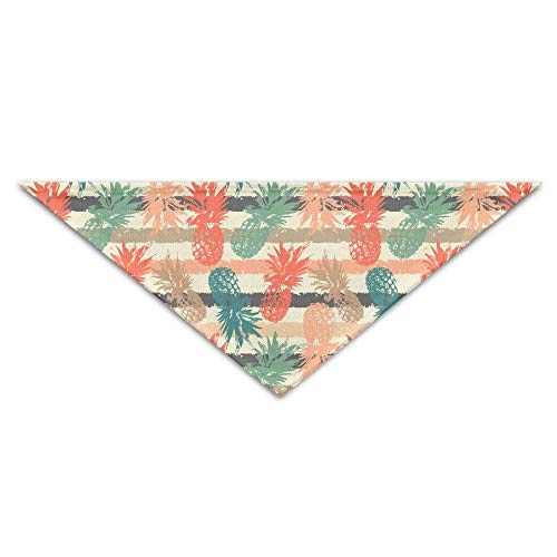 Gxdchfj Hand Drawn Pattern with Pineapple Triangle Pet Scarf Dog Bandana Pet Collars for Dog Cat - ()