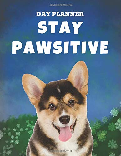 Undated, Blank Hourly Appointment Book For Daily Planning | Day Planner | Welsh Corgi Dog Stay Pawsitive: Funny Weekly Plan Notebook | Cute Puppy Pic ... Meetings & Schedule | Positive Motivation (Office-pics)