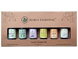 Korus Essential Aromatherapy Essential Oil, 15ml (Pack of 6)