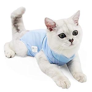 Doton Cat Professionnel Restauration Convient pour abdominaux Collerette des plaies ou des Maladies de la Peau, Alternative pour Chiens et Chats, après la Chirurgie Porter, Maison Vêtements
