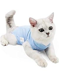 Traje de recuperación Profesional para heridas Abdominales o Enfermedades de la Piel, Alternativo para Gatos y Perros, después de…