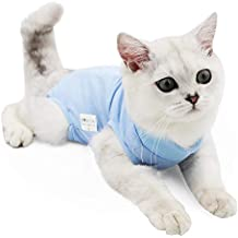 Traje de recuperación Profesional para heridas Abdominales o Enfermedades de la Piel, Alternativo para Gatos