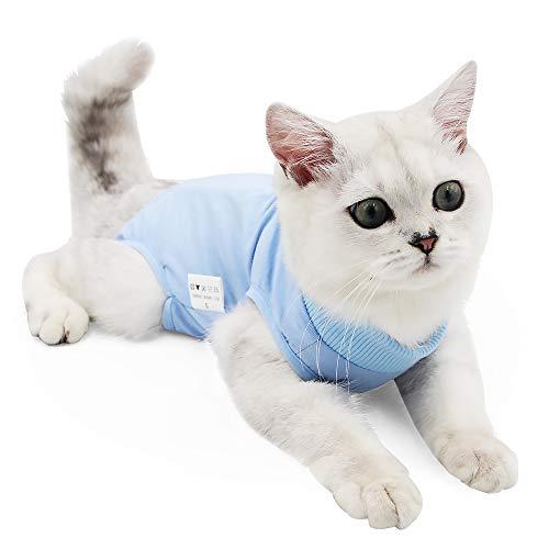 Tuta professionale per degenza per gatti, ideale per ferite addominali o malattie dermatologiche, alternativa al collare elisabettiano, adatta per cani e gatti, da indossare in casa dopo un'operazione