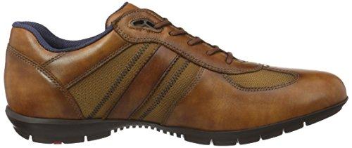 LLOYD  16-029-54 Armand, Baskets pour homme marron moyen
