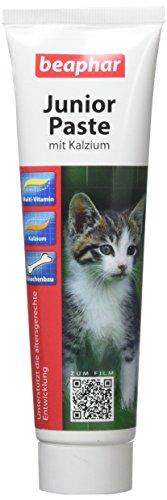 Beaphar Junior-Paste Katze, 1er Pack (1 x 120 g)