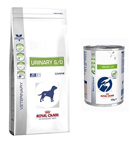 ROYAL CANIN 6015 Alimento Cane Urinary - 1500 gr
