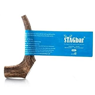 Stag Bar Deer Antler Large 7