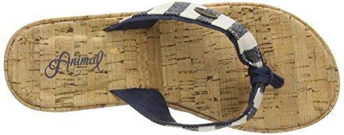 Animal Susie, Tongs Compensées Femme Bleu (Navy 005)